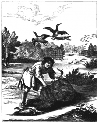 """This engraving of a decoy pond from 1665 from Payne-Gallwey's The Book of Duck Decoys is described as: 'the earliest sketch of a Decoy and its pipes as now used in existence. It is from """"The Fables of Æsop Paraphrased in Verse, adorned with Sculpture and illustrated with Annotations. By John Ogilby, Esq., Master of His Majesty's Revells in the Kingdom of Ireland. Printed by T. Roycroft for the Author, MDCLXV.""""' It illustrates Fable LXXIX, 'The Husbandman and the Stork'"""